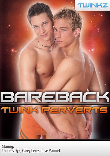 Bareback Twink Perverts cover