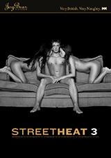 Street Heat 3 Xvideos