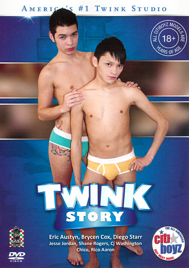Twink Story cover