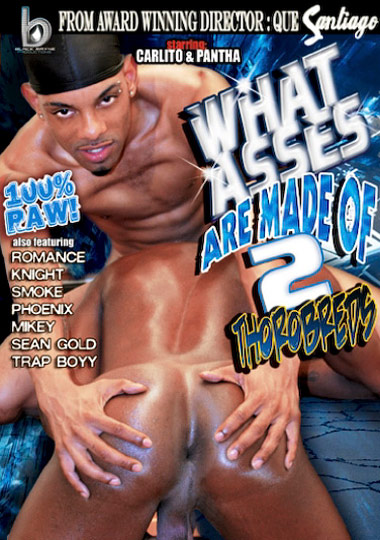 What Asses Are Made Of 2: Thorobreds cover
