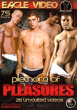 Plethora Of Pleasures