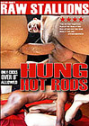 Hung Hot Rods