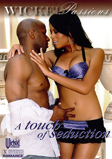 A Touch Of Seduction cover