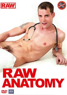Gay Teens : Raw Anatomy!