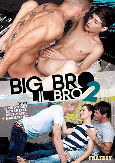 Big Bro Lil Bro 2 cover