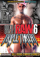 TRIPLE THREAT is the newest installment in the award winning BREED IT RAW series. Featuring the raw and sexxi talents of Romance alongside other Black Rayne favorites to include, Phoenix, Knight, Trap Boyy, Roman, Ghetto Nerd and others. This movie is all about the threesomes. Of course we cant forget the nasty creampies and facials that come in this fuckfest as well. Grab ya bottle of WET Platinum and get to strokin, this one's on us!