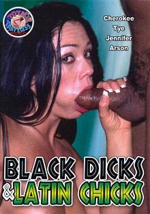 Black Dicks And Latin Chicks