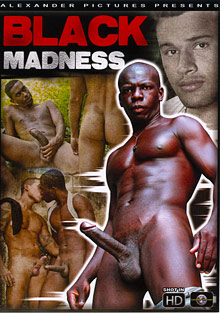 Gay Latino Guys : Black Madness!