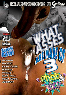 What Asses Are Made Of 3: Phat And Juicy cover
