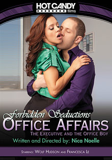 Office Affairs: The Executive and the Office Boy cover
