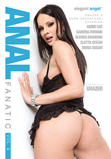 Anal Fanatic 4 cover