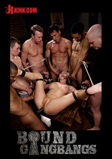 Bound Gangbangs: Skylar Price cover