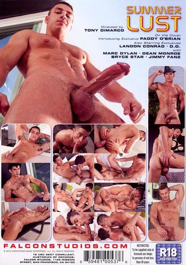 Summer Lust Cover 2