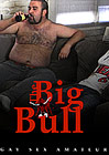 The Big Bull