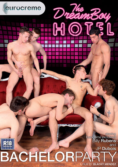 The DreamBoy Hotel: Bachelor Party cover