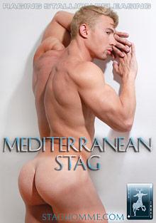 Mediterranean Stag cover