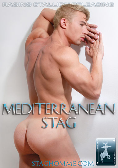 Mediterranean Stag cover