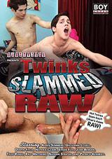 Twinks Slammed Raw