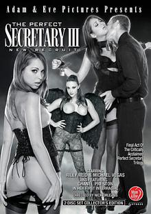 The Perfect Secretary 3: New Recruit cover