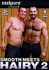 Smooth Meets Hairy 2