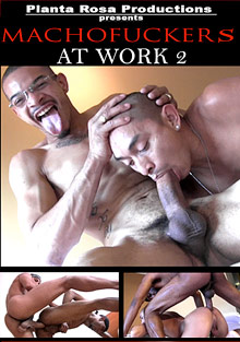 Machofuckers At Work 2 cover
