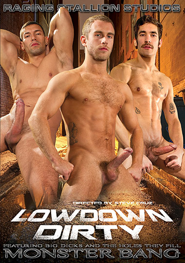 Lowdown Dirty cover