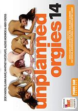 Unplanned Orgies 14