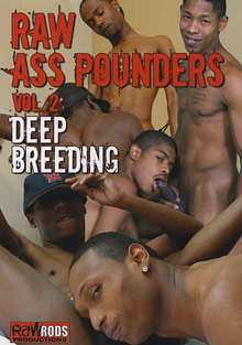 Gay Ebony Studs : Raw ass Pounders 2: Deep Breeding!