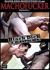 Black Dick Terror