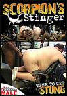 Scorpion's Stinger