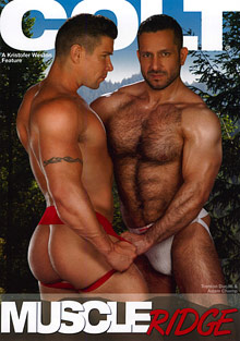 Gay Bears Hairy : Muscle Ridge!