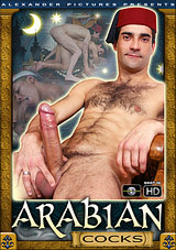 Arabian Cocks