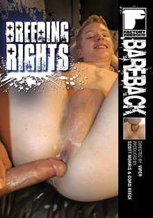 Gay Porn : Breeding Rights!