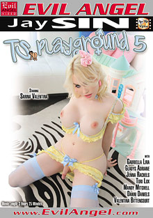 TS Playground 5 cover