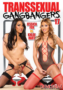 Transsexual Gang Bangers 17 cover