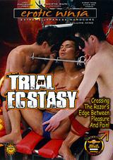 Erotic Ninja 9: Trial By Ecstasy