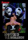 Bound Gangbangs: Pandamonium Panda Lullaby Panda Porno