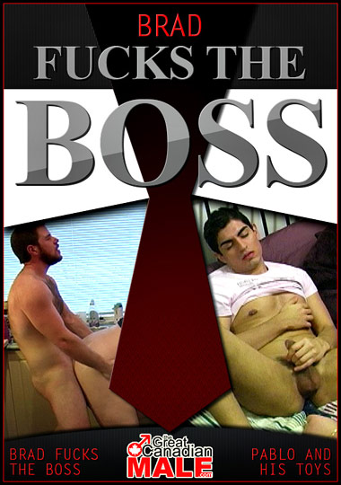 Brad Fucks The Boss - Pablo And His Toys cover
