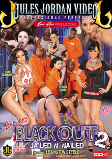 Lisa Ann's Black Out 2 cover