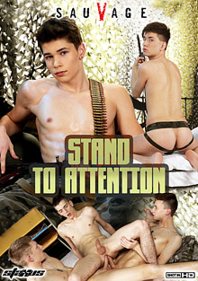 Stand To Attention cover