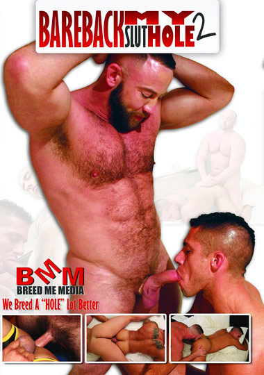 Bareback My Slut Hole 2 cover