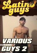 Various Guys 2