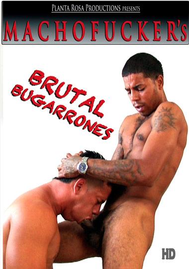 Brutal Bugarrones cover