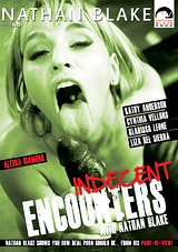 Indecent Encounters Xvideos