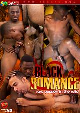 Black Romance Xvideo gay
