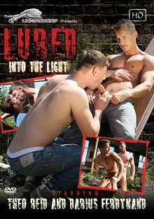 Lured Into The Light cover