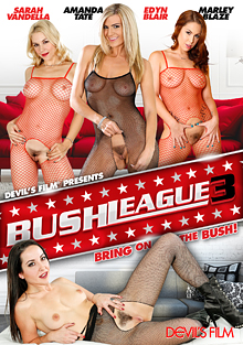 Bush League 3 cover