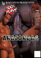 Anacondas Xvideo gay