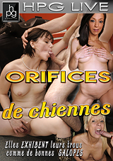 Orifices De Chiennes