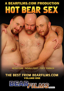 Hot Bear Sex cover